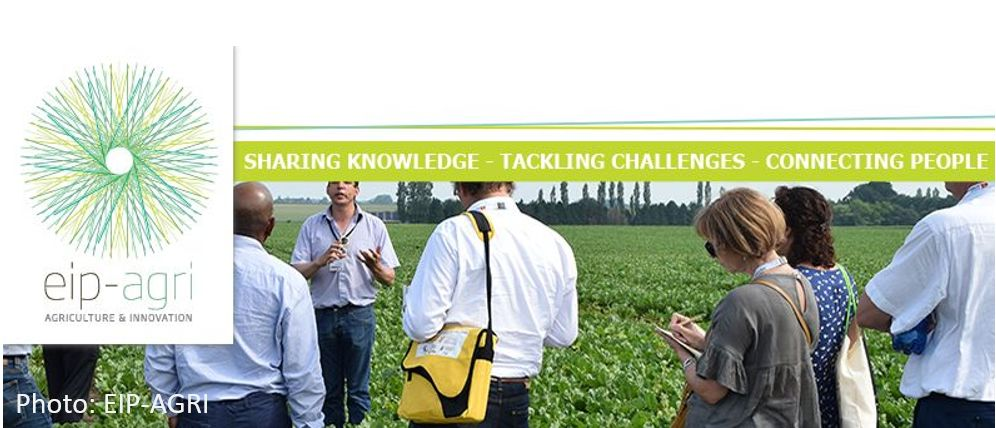"EIP-AGRI online Seminar: ""CAP Strategic Plans: the key role of Agricultural Knowledge and Innovation Systems (AKIS) in Member States"" - Online seminar"